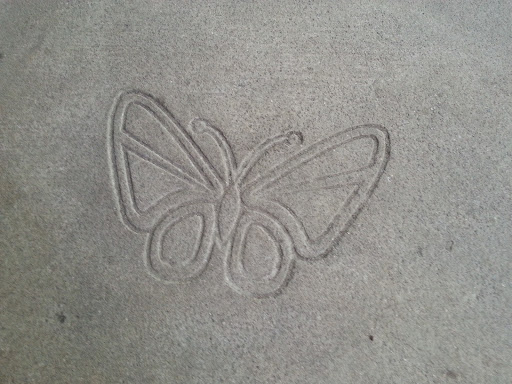 Flying Butterfly On Concrete
