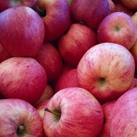Splendour.  Bought some of these. Going to try to make a low sugar apple pie by Sally Price - Food & Drink Fruits & Vegetables