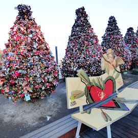 Lock Trees at Seoul Tower by Deborah Chew - City,  Street & Park  City Parks