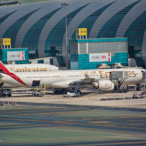 Emirates Airline by Jigs Crisostomo - Transportation Airplanes ( #flydubai, #airline, #emirates,  )