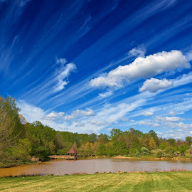 Meadowlark Gardens by Nicolas Raymond - Landscapes Cloud Formations ( america, colorful, states, vibrant, landscape, usa, vienna, sky, colourful, nature, foliage, cloudy, virginia, pond, water, clouds, united, park, hdr, gardens, lake, scenic, meadowlark, scene, trees, scenery, garden,  )