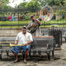 Jackson Square Musicians by Tara Bauman - People Musicians & Entertainers (  )