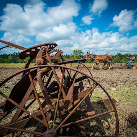 How things have changed by Sheldon Anderson - News & Events Technology ( animals, mule, horse, implements, people, farming )