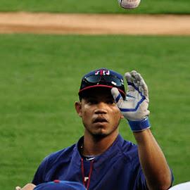 Texas Rangers by Jose Matutina - Sports & Fitness Baseball ( texas rangers, ball, baseball, sports )