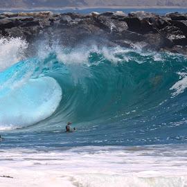 Newport Beach by Tim Guzman - Sports & Fitness Swimming ( sea, wedge, newport, ocean, beach, surf )
