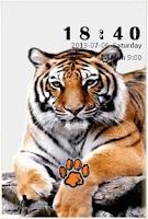 Screenshot of TIGER S4 LOCK SCREEN