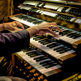 Church Organ by Alan Roseman - Artistic Objects Musical Instruments ( keyboard, organist, episcopal, musician, wilson, church organ, keyboard player )