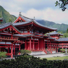 Bud-est Temple on Oahu Hawaii  by Carol Langsford - Buildings & Architecture Places of Worship