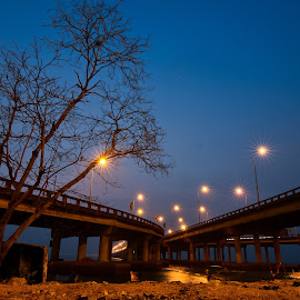 Starry Dawn by Chin Fei Ng - Buildings & Architecture Bridges & Suspended Structures ( blue hour; tree; bridge; starry; dawn )