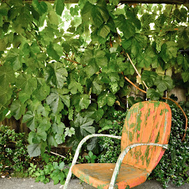 Grandma's Old Chair by Matt Carter - Artistic Objects Furniture ( chair, old, painted, leaves, grape vine, Chair, Chairs, Sitting )