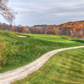 Par three fifth at Champion Hills by JERry RYan - Sports & Fitness Golf