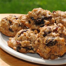 Oatmeal Breakfast Treats