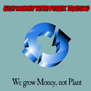 Is forex easy money
