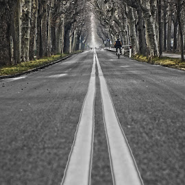 Road by Anfossi Claudio - City,  Street & Park  Street Scenes (  )
