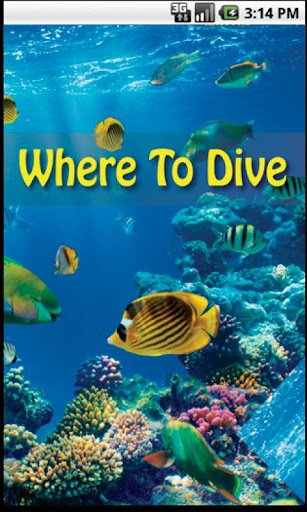 Where To Dive