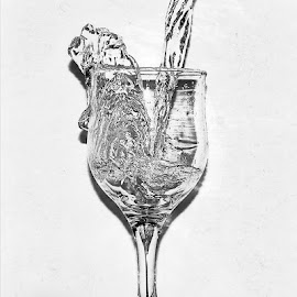 Fresh water  by Slobodan Bobo Kovac - Food & Drink Alcohol & Drinks ( water, nature, black and white, fresh, bobo, drink, glass, photo )