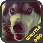 Dog Whistle Trainer 1.5 Apk
