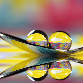 by Dipali S - Artistic Objects Other Objects ( reflection, color, colorful, sphere, spoon, refraction,  )
