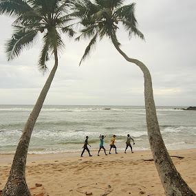 one step beyond by Gregor Znidarsic - Landscapes Beaches ( palm, sand, tree, waves, boys, sea, sri lanka, beach,  )