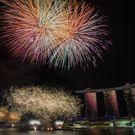 Singapore's National Day Celebrations by Gavin Lee - News & Events World Events ( fireworks, night, singapore )