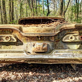 The Edsel at Old Car City by Mike Boening - Transportation Automobiles ( old car city, old, olympus omd em1, hdr, cars, white, junkyard, rust, atlanta, ga, abandoned )