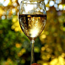 Autumn in the glass of fine vine by Alka Smile - Food & Drink Alcohol & Drinks