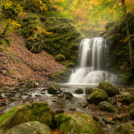 Secret Spot by George Petridis - Landscapes Forests ( nature, autumn, colors, fall, waterfall, september )