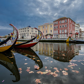 Aveiro City by Vasco Morais - City,  Street & Park  Street Scenes (  )
