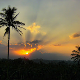 SUNSET by Hendro Susilo Antonius - Landscapes Sunsets & Sunrises