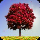 Autumn Trees Live Wallpaper icon