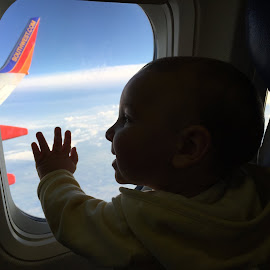 Earning my Wings by Jared Lantzman - Babies & Children Babies ( clouds, wing, travel, up, looking, flying, adventure, plane, window, happy, air, baby, smile, boy,  )