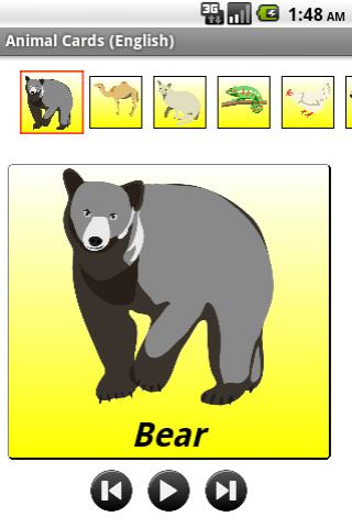 动物抽认卡片 英文