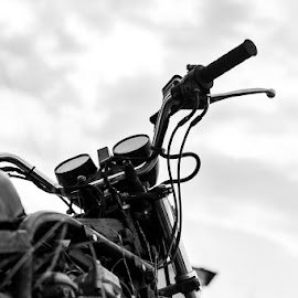 Parked by Christine Wright - Transportation Motorcycles ( black and white, motorcycle, move )