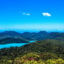 Nature's Garden by Petra Bensted - Landscapes Travel ( queensland, vista, whitsundays, sea, islands, ocean, view )