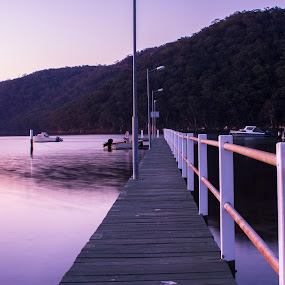 On the Boardwalk by Tamara Jacobs - Buildings & Architecture Bridges & Suspended Structures ( water, bay, sunset, jetty, boat, public, wharf, boardwalk )