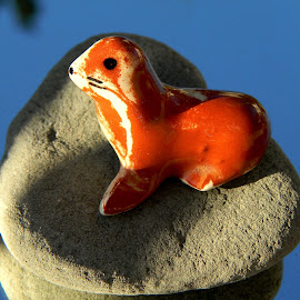 Seal on Rock at Milwaukie, Oregon by Liz Hahn - Artistic Objects Toys