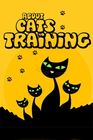 Cats Training - complete guide