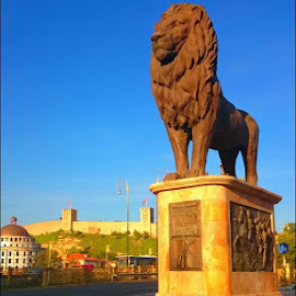Lion Monument in Skopje, Macedonia by Ѓорѓи Станковски - Buildings & Architecture Statues & Monuments