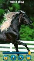Screenshot of Horses Wallpapers
