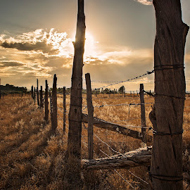 Ended Up by Kelly Thompson Edwards - Landscapes Prairies, Meadows & Fields ( clouds, wood fence, field, fence, sunset, colorado, shadows )