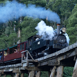 Steam by Ann Baldock - Transportation Trains ( train, bridge, steam,  )