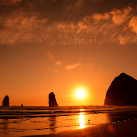 Haystack Rocks by Sandra Maldonado - Nature Up Close Water ( haystack rocks, cannon beach, sunset, ocean )