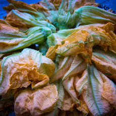 Fried Squash Blossoms