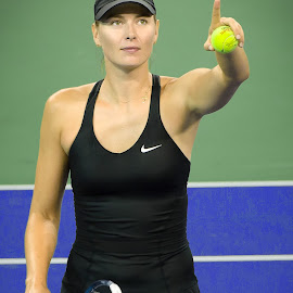 Maria by David Freese - Sports & Fitness Tennis