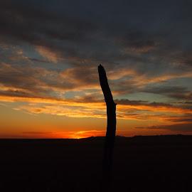 Dakota Sunset by Barbara Olstad - Landscapes Sunsets & Sunrises