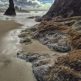 Bandon by Becca McKinnon - Instagram & Mobile iPhone ( clouds, oregon, bandon, waves, pacific ocean, pacific, sea, ocean, rocks, coast )