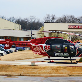 by Richard  Friedle - Transportation Helicopters ( helicopter, emergency, transportation )