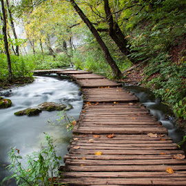 Plitvice Lakes National Park, Croatia by Kellie Netherwood - Buildings & Architecture Bridges & Suspended Structures ( water, croatia, landscape, plitvice lakes national park )