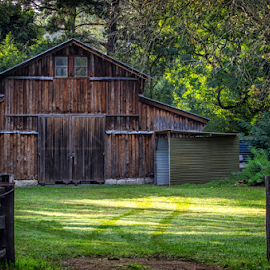 Barn by Loredana  Smith - Buildings & Architecture Other Exteriors ( wooden, barn, grass, green, outdoors, trees, landscape )