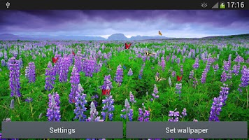 Screenshot of Sea Of Flowers